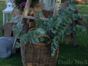 cesta con eucalipto