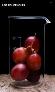 uvas Caudalie