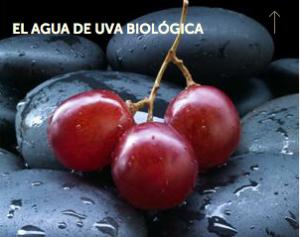 Agua de uva biológica- Caudalie