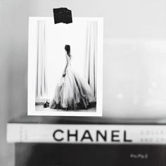 foto y libro chanel